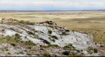 Petrified Forest National Park - Petrified Wood / Solomons Throne