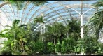 Tropical forest conservatory