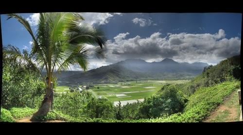 Hanalei Valley Kauai