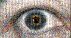 Photomosaic of the eye