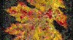 Photomosaic of an oak leaf in autumn colors