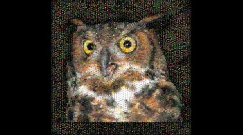 Photomosaic image of a great horned owl