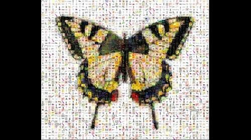 Photomosaic of a tiger swallowtail butterfly
