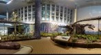 Dinosaur Exhibit at Carnegie Museum of Natural History - in 3D Stereo