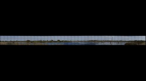 Viera Wetlands 2