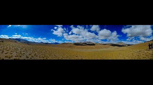 Changtang, Ladakh - India