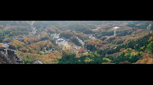 Ryozen foliage