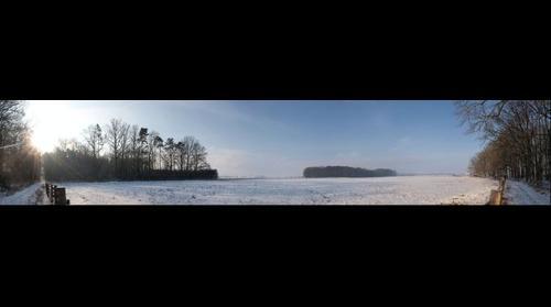 Pastvina v zime 1