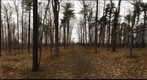 Dairy Bush GigaPan - 70 - Jan 02 2011