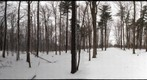 Dairy Bush GigaPan - 72 - Jan 12 2011 - partial
