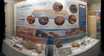 Sidmouth Museum geology display