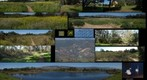 110202 Goleta, California, Lake Los Carneros collage of park walk
