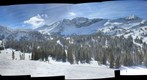 Alta bark Beetle survey project - (01) Top of Sunnyside lift [site selection image set]