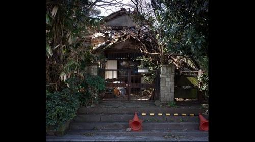 Japan Surface 20110225