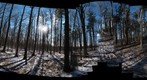 Dairy Bush GigaPan - 79 - March 02 2011