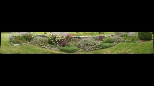 Dee's Garden Merc