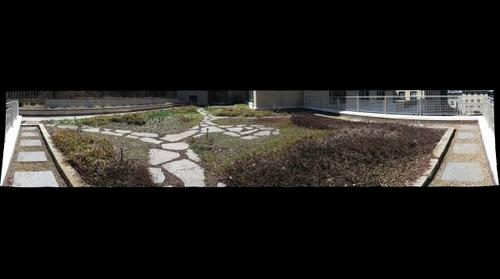 Green Practices Walking Tour Doherty Hall Laboratories Green Roof