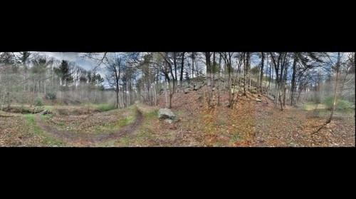 Appalachian Trail #1