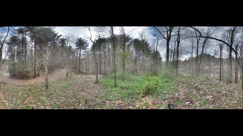 Appalachian Trail #2