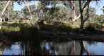 Todd River Reflections