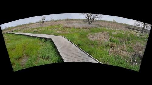 Boardwalk at Baker Wetlands