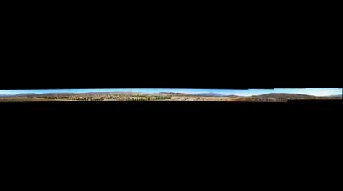 Desert Suburban Sprawl