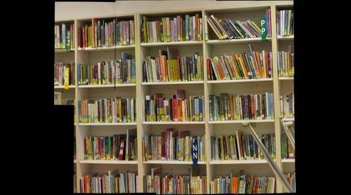 Harlem Elementary Library