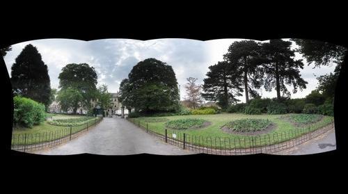 Sydney Gardens IV