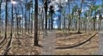 Dairy Bush GigaPan - 88 - May 05 2011