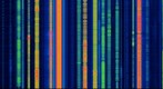 Broadcast Radio Spectrum 0 Hz to 1.8 MHz