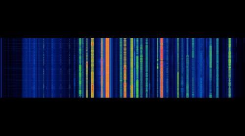 Broadcast Radio Spectrum 0 Hz to 1.8 MHz