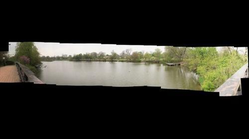Jackson Park Panorama