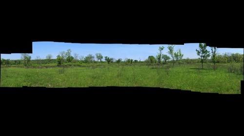 Sagawau Mixed Grassland