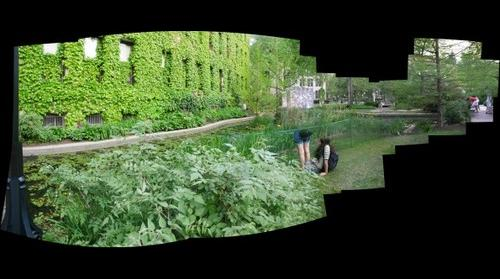 Botany Pond, University of Chicago