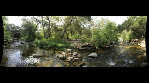 Elfin Forest Recreational Reserve (Lower Creek Crossing)