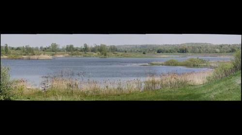 Komoka Ponds