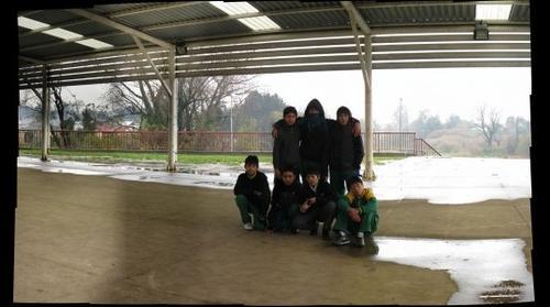 Septmo Escuela El Bosque