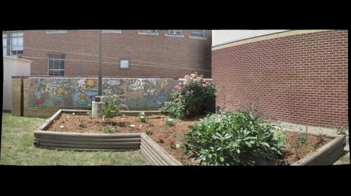 Mural and garden