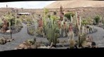 Jardin de Cactus - Lanzarote