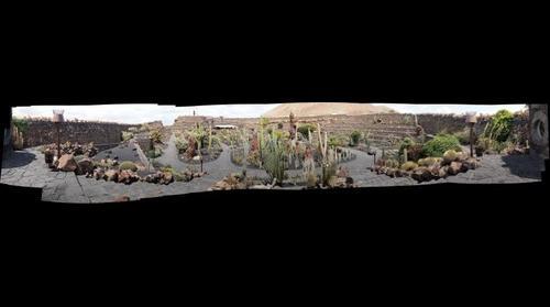 Jardin de Cactus - Lanzarote
