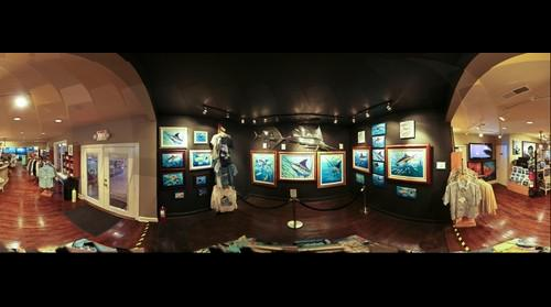 Occhio Gallery Guy Harvey section