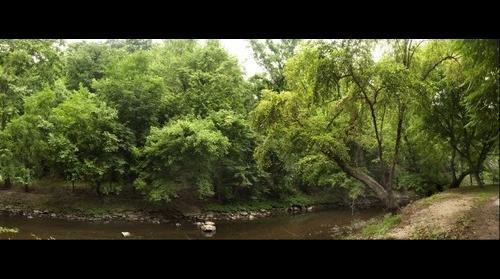 The Creek's Edge: Rock Creek National Park-Washington, DC
