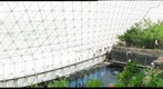 Biosphere 2 | Savannah Biome I, Gigapan. 2011