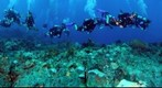 Odyssey Expeditions Students Explore &#39;Mystery Reef&#39;, St. Vincent