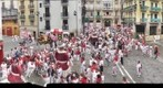 Procesion Sanfermin 2011. Gigantes
