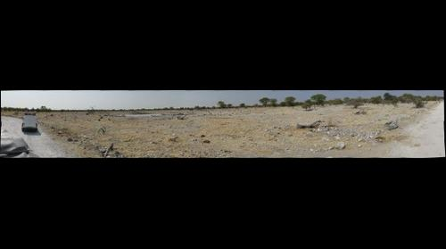 Etosha Waterhole