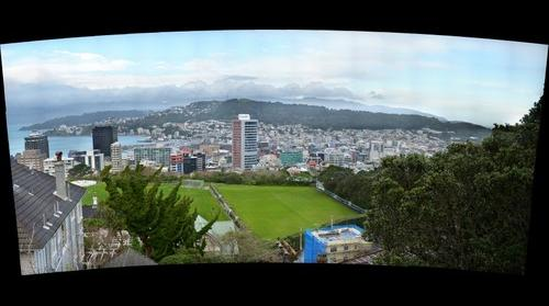 Wellington Central and Te Aro from the Botanical Gardens