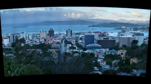 Thorndon, Wellington from Otari-Wilton's Bush