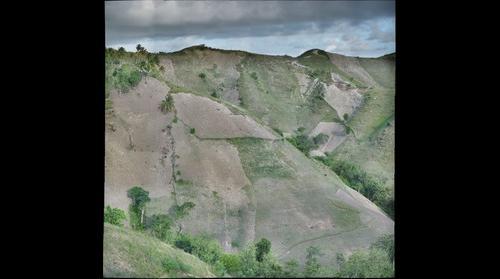 Hillside Agriculture, Port Salut, Haiti