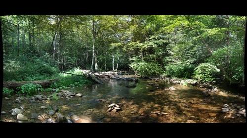 West Branch Fishing Creek (Sullivan County, Pennsylvania)